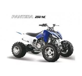 Квадроцикл PANTERA 250 SUPER SPORT