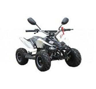 Квадроцикл RAIZOR TREK 50